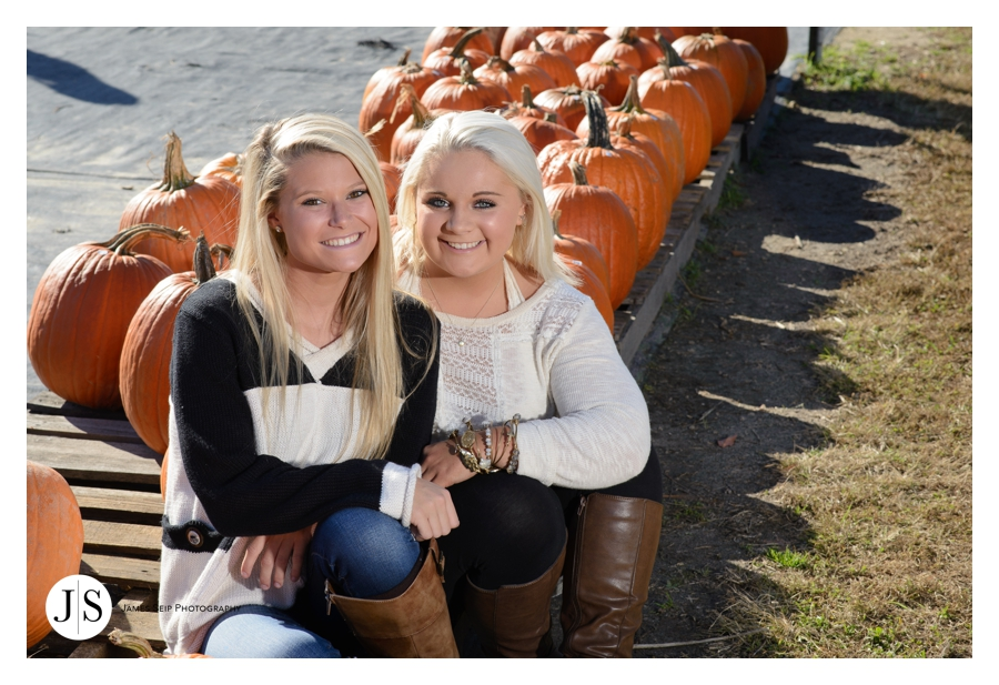 pumpkin patch blog 1